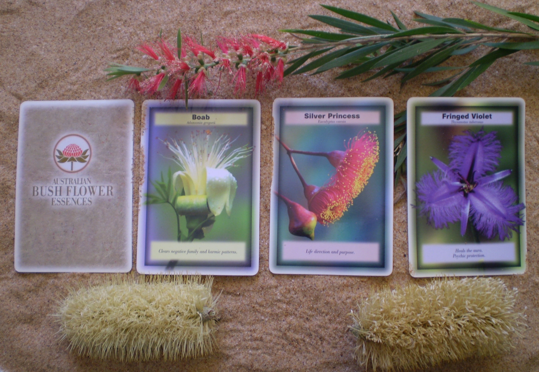 Australian Bush Flower Essences Bush Flower Readings Readings