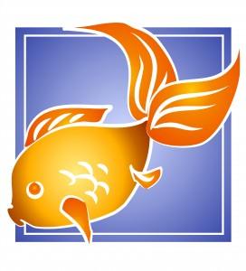 Fish_2741599